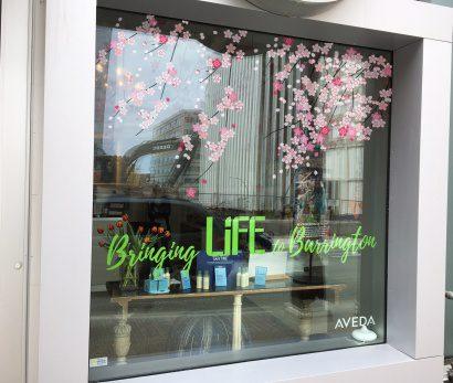 LIfe-flower-window-touchup-copy.jpg